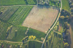 Najważniejsze wiadomości i aktualności rolnicze